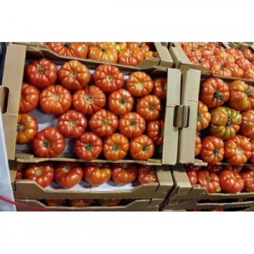 Yıldızköy f1 hibrit köy domatesi tohumu 1000 adet